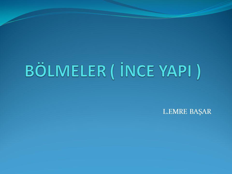 L.EMRE BAŞAR