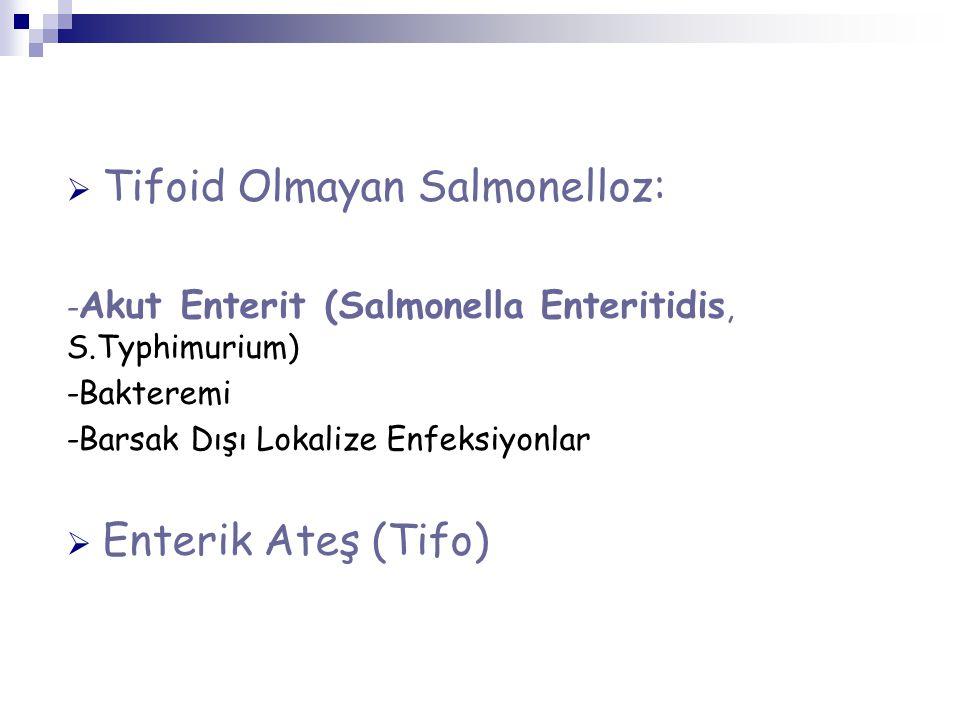 Tifoid Olmayan Salmonelloz: - Akut Enterit (Salmonella Enteritidis, S.Typhimurium) -Bakteremi -Barsak Dışı Lokalize Enfeksiyonlar  Enterik Ateş (Tifo)