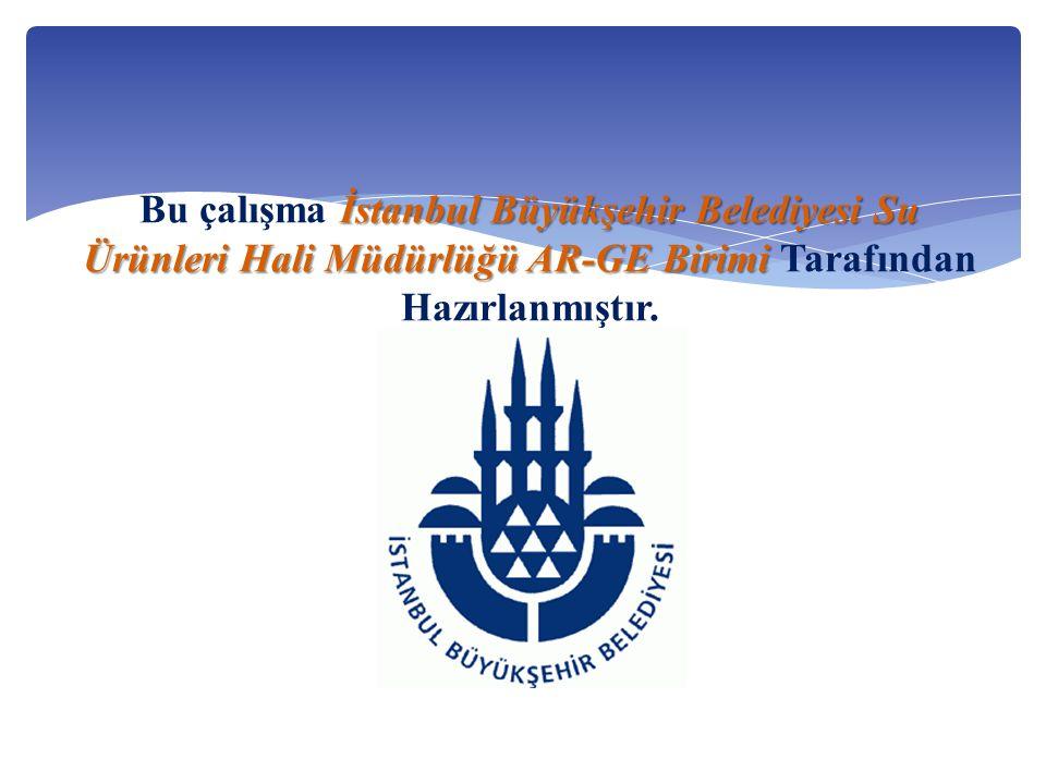 İstanbul Büyükşehir Belediyesi Su Ürünleri Hali MüdürlüğüAR-GE Birimi Bu çalışma İstanbul Büyükşehir Belediyesi Su Ürünleri Hali Müdürlüğü AR-GE Birimi Tarafından Hazırlanmıştır.