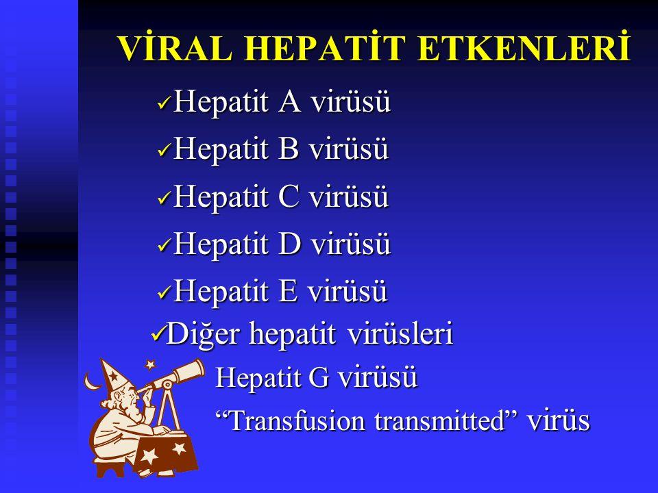 VİRAL HEPATİT ETKENLERİ VİRAL HEPATİT ETKENLERİ Hepatit A virüsü Hepatit A virüsü Hepatit B virüsü Hepatit B virüsü Hepatit C virüsü Hepatit C virüsü Hepatit D virüsü Hepatit D virüsü Hepatit E virüsü Hepatit E virüsü Diğer hepatit virüsleri Diğer hepatit virüsleri Hepatit G virüsü Transfusion transmitted virüs