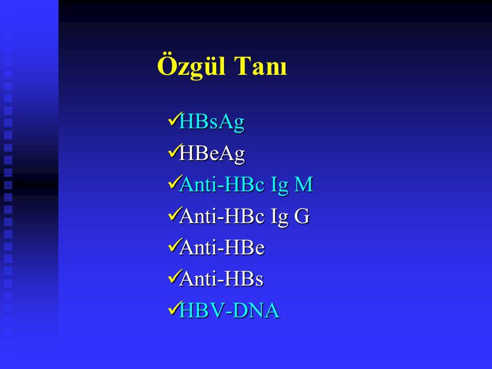 Özgül Tanı HBsAg HBsAg HBeAg HBeAg Anti-HBc Ig M Anti-HBc Ig M Anti-HBc Ig G Anti-HBc Ig G Anti-HBe Anti-HBe Anti-HBs Anti-HBs HBV-DNA HBV-DNA