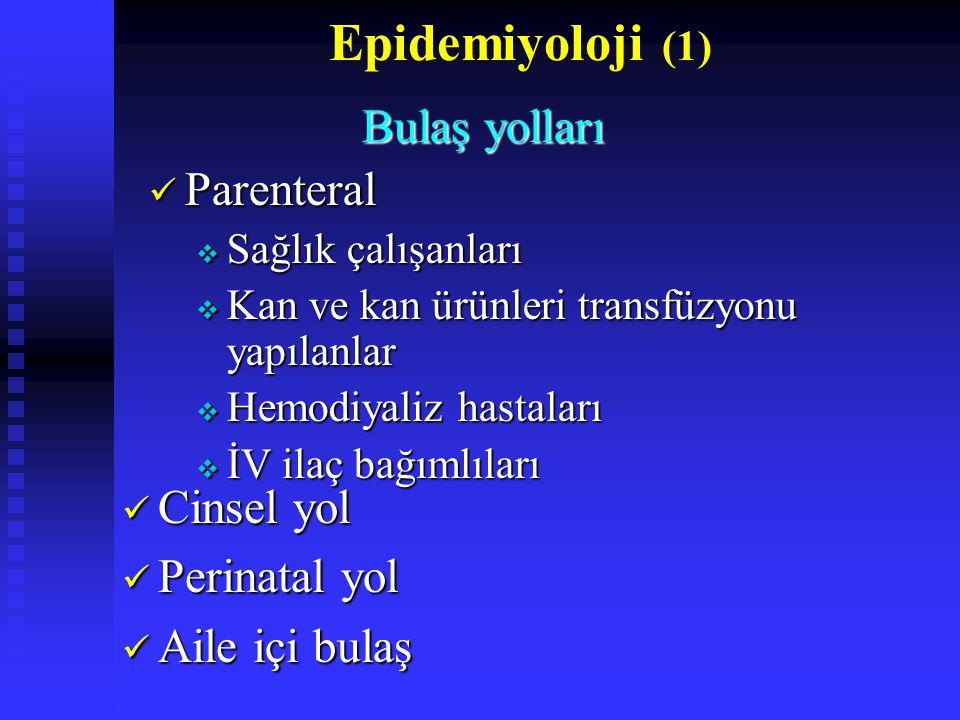 Epidemiyoloji (1) Cinsel yol Cinsel yol Perinatal yol Perinatal yol Aile içi bulaş Aile içi bulaş Bulaş yolları Bulaş yolları Parenteral Parenteral  Sağlık çalışanları  Kan ve kan ürünleri transfüzyonu yapılanlar  Hemodiyaliz hastaları  İV ilaç bağımlıları