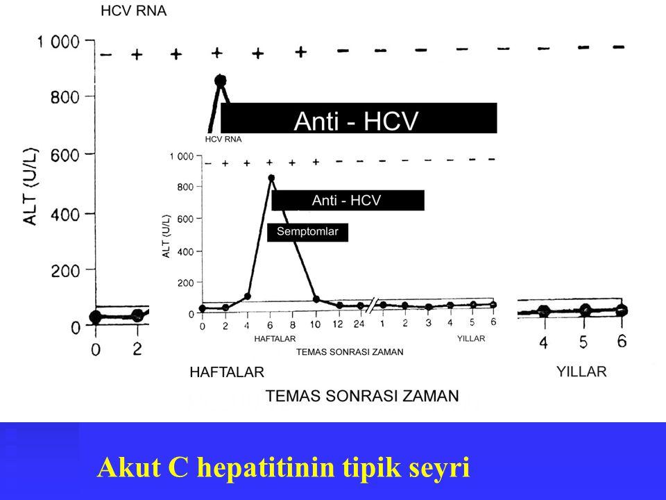 Akut C hepatitinin tipik seyri