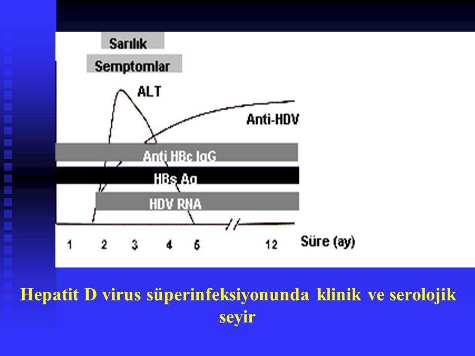 Hepatit D virus süperinfeksiyonunda klinik ve serolojik seyir