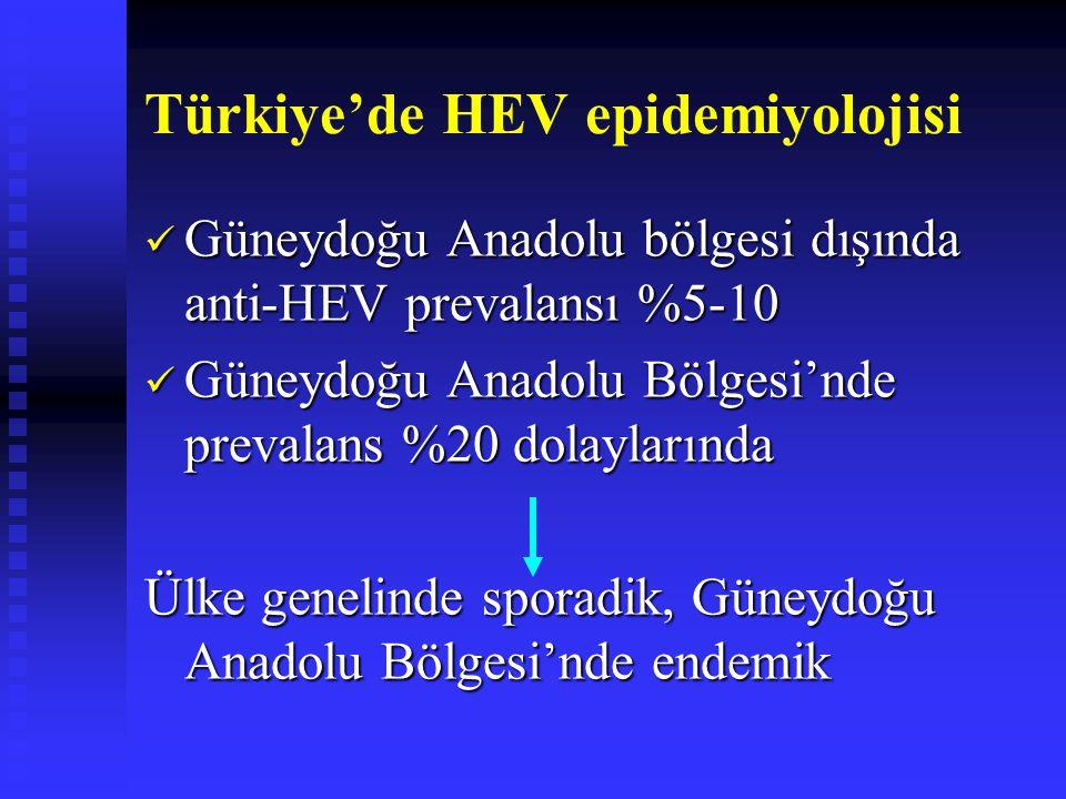 Türkiye'de HEV epidemiyolojisi Güneydoğu Anadolu bölgesi dışında anti-HEV prevalansı %5-10 Güneydoğu Anadolu bölgesi dışında anti-HEV prevalansı %5-10 Güneydoğu Anadolu Bölgesi'nde prevalans %20 dolaylarında Güneydoğu Anadolu Bölgesi'nde prevalans %20 dolaylarında Ülke genelinde sporadik, Güneydoğu Anadolu Bölgesi'nde endemik