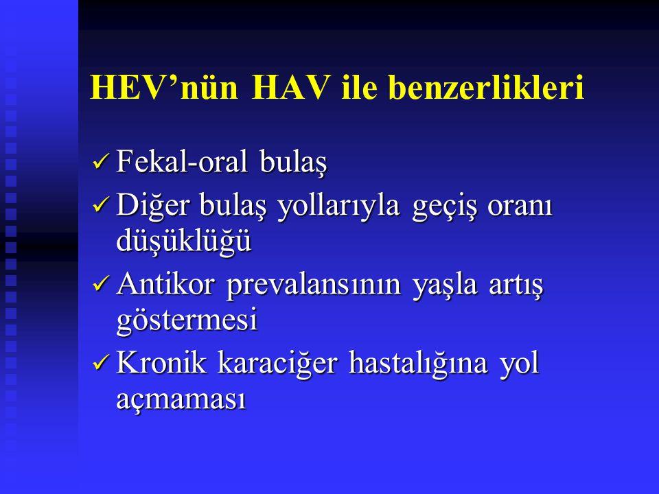 HEV'nün HAV ile benzerlikleri Fekal-oral bulaş Fekal-oral bulaş Diğer bulaş yollarıyla geçiş oranı düşüklüğü Diğer bulaş yollarıyla geçiş oranı düşükl