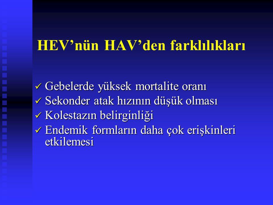 HEV'nün HAV'den farklılıkları Gebelerde yüksek mortalite oranı Gebelerde yüksek mortalite oranı Sekonder atak hızının düşük olması Sekonder atak hızının düşük olması Kolestazın belirginliği Kolestazın belirginliği Endemik formların daha çok erişkinleri etkilemesi Endemik formların daha çok erişkinleri etkilemesi