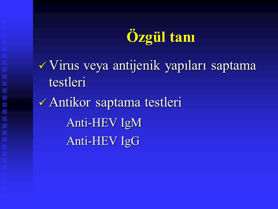 Virus veya antijenik yapıları saptama testleri Virus veya antijenik yapıları saptama testleri Antikor saptama testleri Antikor saptama testleri Anti-H