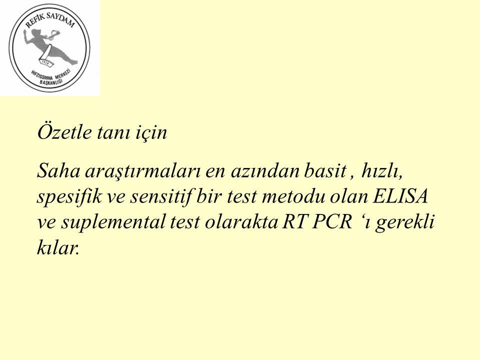 Özetle tanı için Saha araştırmaları en azından basit, hızlı, spesifik ve sensitif bir test metodu olan ELISA ve suplemental test olarakta RT PCR 'ı gerekli kılar.