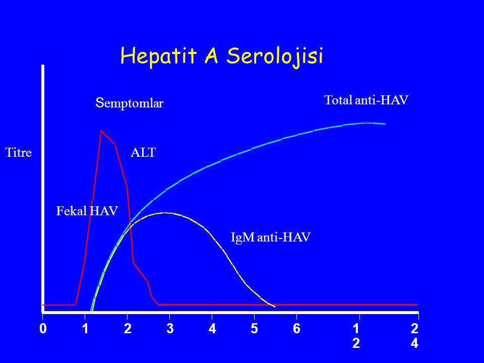 S emptomlar 0123 4561212 2424 Total anti-HAV TitreALT IgM anti-HAV Hepatit A Serolojisi Fekal HAV