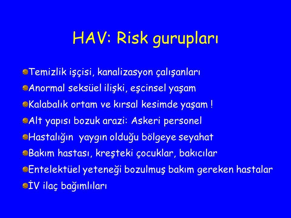 HAV: Risk gurupları Temizlik işçisi, kanalizasyon çalışanları Anormal seksüel ilişki, eşcinsel yaşam Kalabalık ortam ve kırsal kesimde yaşam ! Alt yap