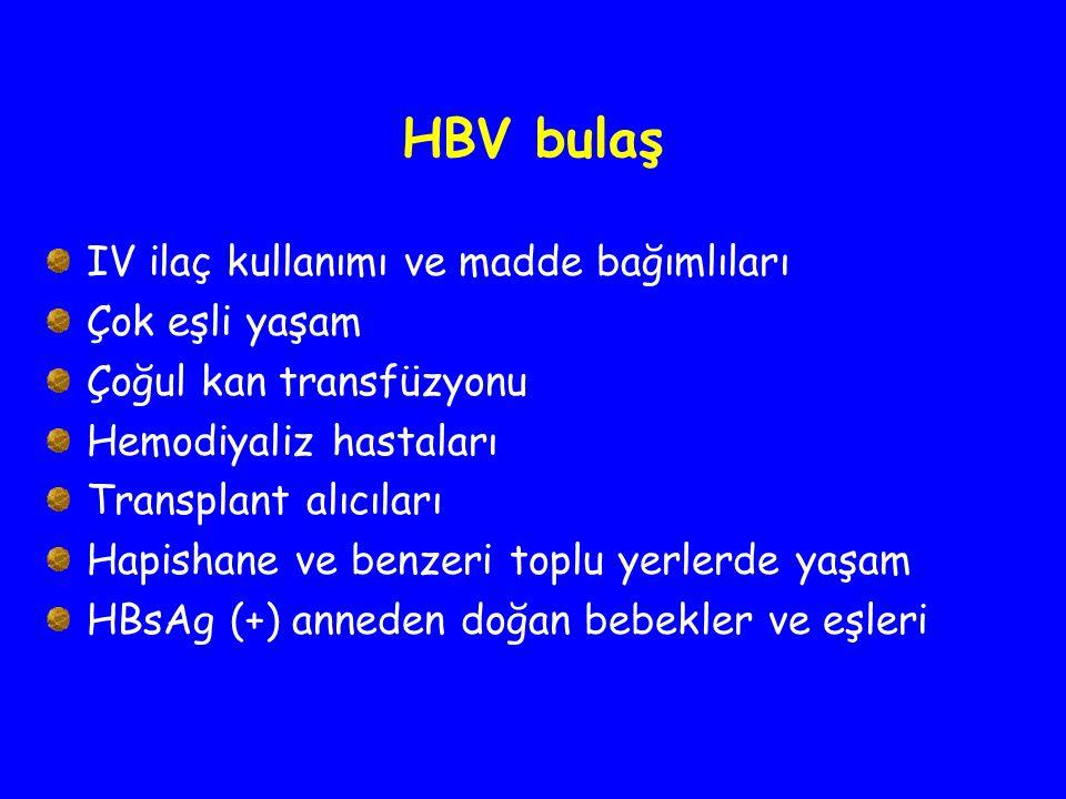 HBV bulaş IV ilaç kullanımı ve madde bağımlıları Çok eşli yaşam Çoğul kan transfüzyonu Hemodiyaliz hastaları Transplant alıcıları Hapishane ve benzeri