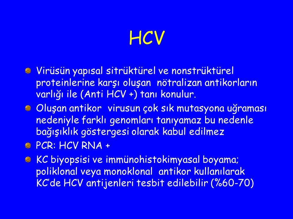HCV Virüsün yapısal sitrüktürel ve nonstrüktürel proteinlerine karşı oluşan nötralizan antikorların varlığı ile (Anti HCV +) tanı konulur. Oluşan anti