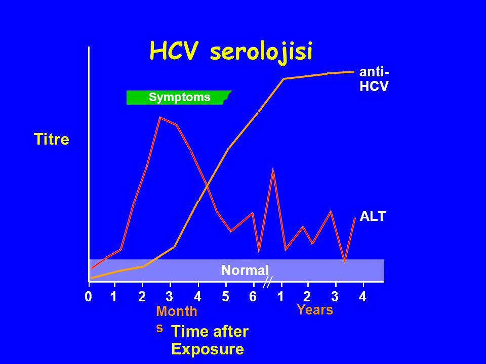 Symptoms anti- HCV ALT Normal 012345 61234 HCV serolojisi Titre Month s Years Time after Exposure