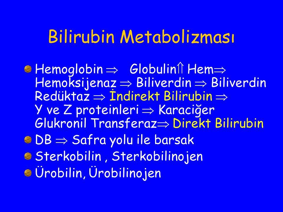 Bilirubin Metabolizması Hemoglobin  Globulin  Hem  Hemoksijenaz  Biliverdin  Biliverdin Redüktaz  İndirekt Bilirubin  Y ve Z proteinleri  Kara