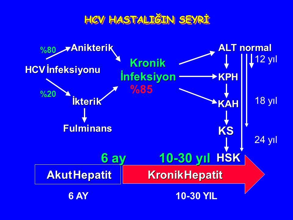 HCV İnfeksiyonu %20 KS HSK Kronik İnfeksiyon İkterik Anikterik %80 ALT normal KPH KAH Fulminans Akut Hepatit Kronik Hepatit 6 ay 10-30 yıl %85 HCV HAS