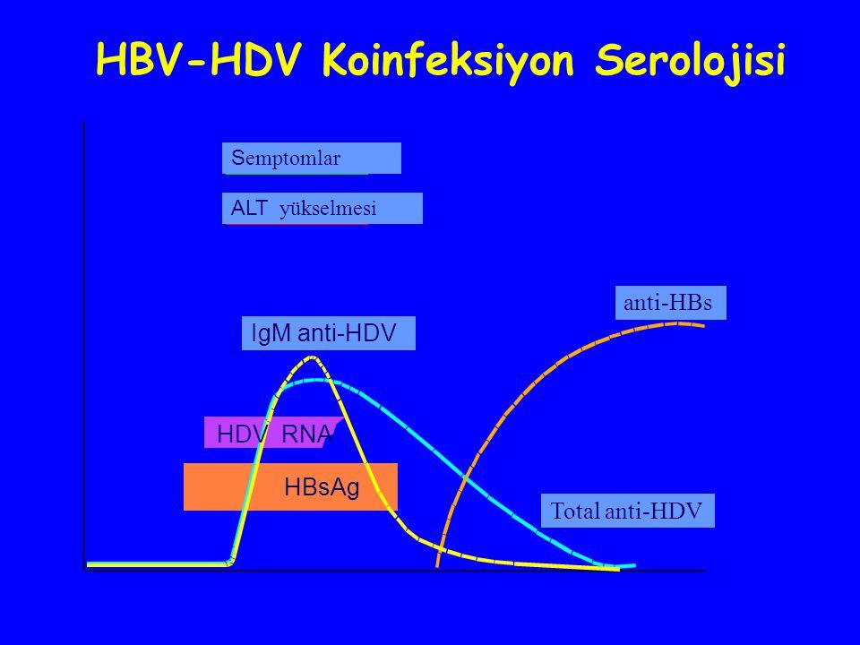 anti-HBs S emptomlar ALT yükselmesi Total anti-HDV IgM anti-HDV HDV RNA HBsAg HBV-HDV Koinfeksiyon Serolojisi