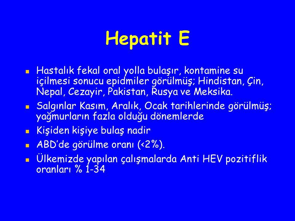 Hepatit E Hastalık fekal oral yolla bulaşır, kontamine su içilmesi sonucu epidmiler görülmüş; Hindistan, Çin, Nepal, Cezayir, Pakistan, Rusya ve Meksi
