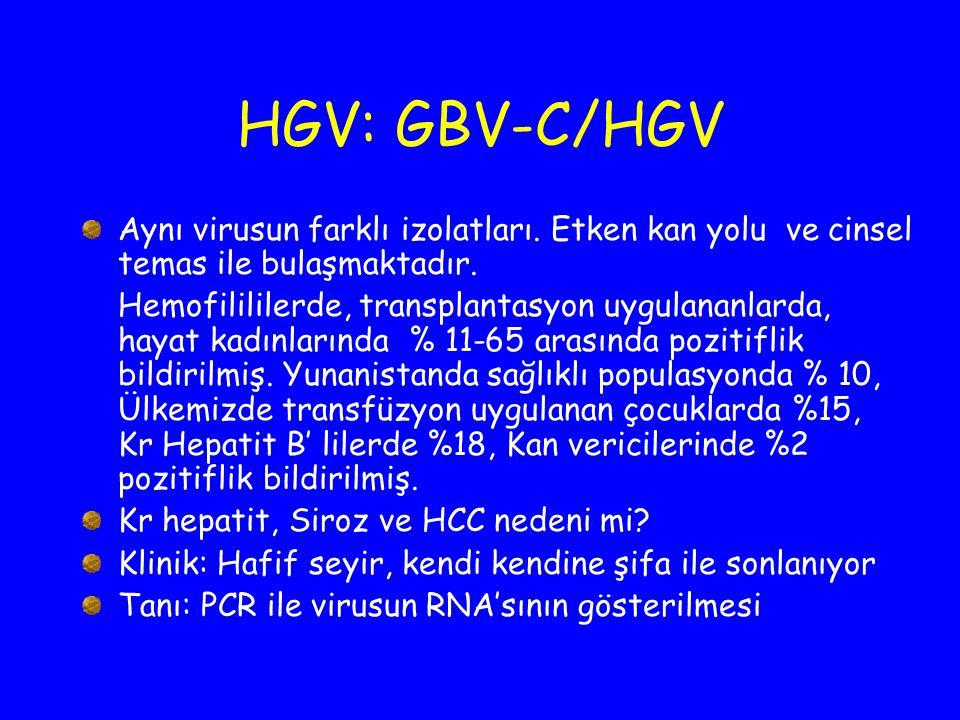 HGV: GBV-C/HGV Aynı virusun farklı izolatları. Etken kan yolu ve cinsel temas ile bulaşmaktadır. Hemofilililerde, transplantasyon uygulananlarda, haya