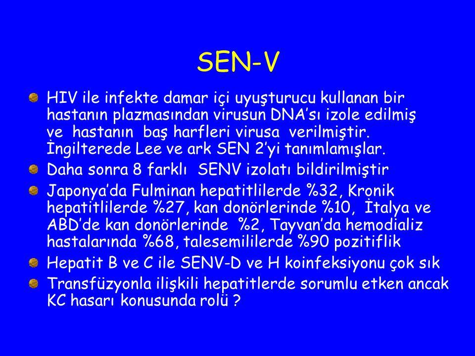 SEN-V HIV ile infekte damar içi uyuşturucu kullanan bir hastanın plazmasından virusun DNA'sı izole edilmiş ve hastanın baş harfleri virusa verilmiştir