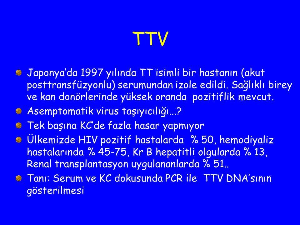 TTV Japonya'da 1997 yılında TT isimli bir hastanın (akut posttransfüzyonlu) serumundan izole edildi. Sağlıklı birey ve kan donörlerinde yüksek oranda
