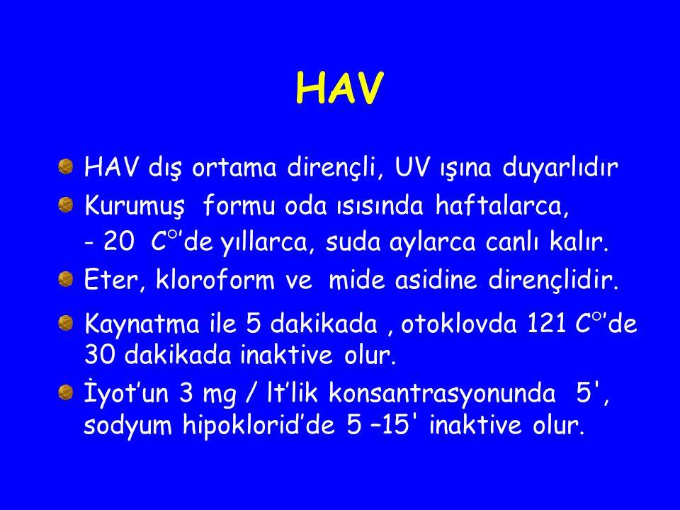 HAV HAV dış ortama dirençli, UV ışına duyarlıdır Kurumuş formu oda ısısında haftalarca, - 20 C  'de yıllarca, suda aylarca canlı kalır. Eter, klorofo