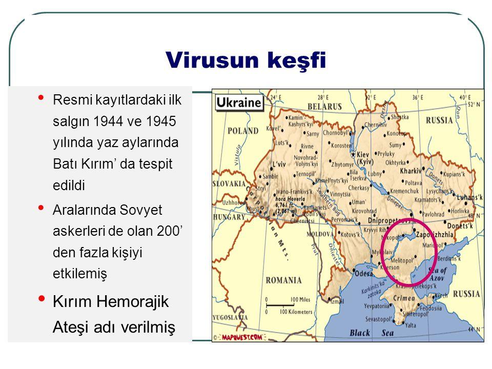 Virusun keşfi Resmi kayıtlardaki ilk salgın 1944 ve 1945 yılında yaz aylarında Batı Kırım' da tespit edildi Aralarında Sovyet askerleri de olan 200' den fazla kişiyi etkilemiş Kırım Hemorajik Ateşi adı verilmiş