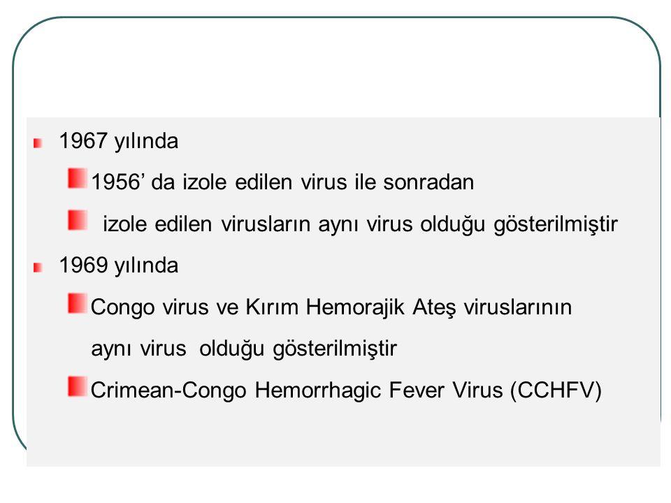 1967 yılında 1956' da izole edilen virus ile sonradan izole edilen virusların aynı virus olduğu gösterilmiştir 1969 yılında Congo virus ve Kırım Hemorajik Ateş viruslarının aynı virus olduğu gösterilmiştir Crimean-Congo Hemorrhagic Fever Virus (CCHFV)