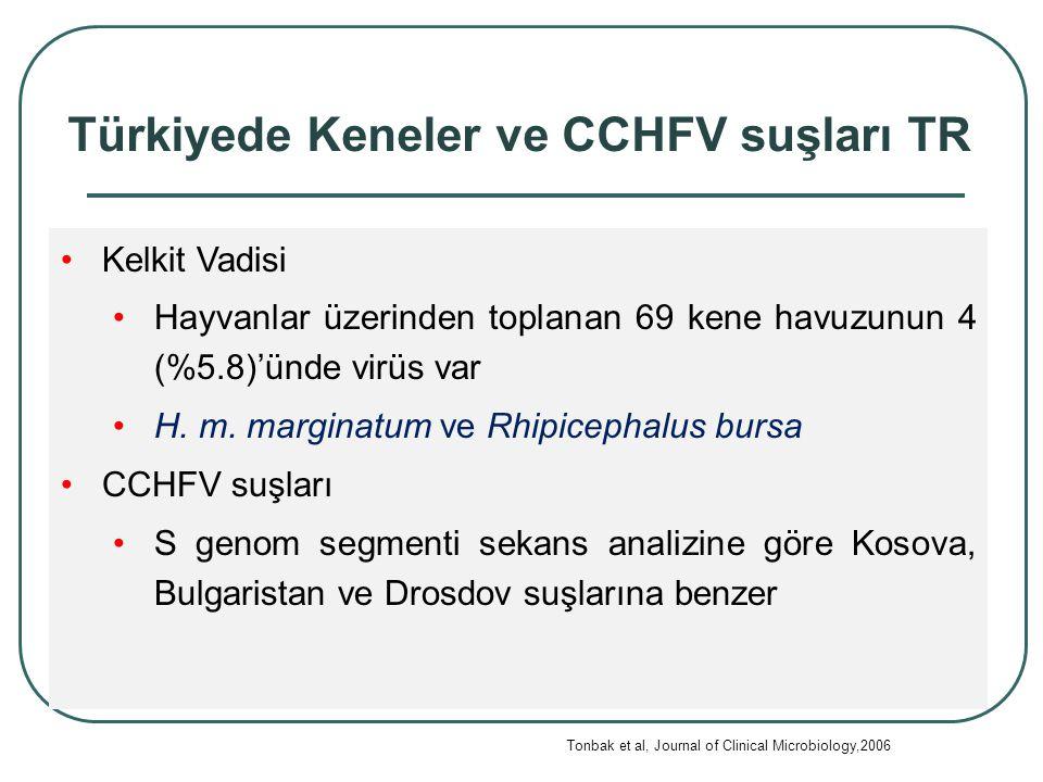22 Türkiyede Keneler ve CCHFV suşları TR Kelkit Vadisi Hayvanlar üzerinden toplanan 69 kene havuzunun 4 (%5.8)'ünde virüs var H.