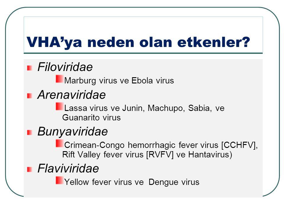 VHA'ya neden olan etkenler.