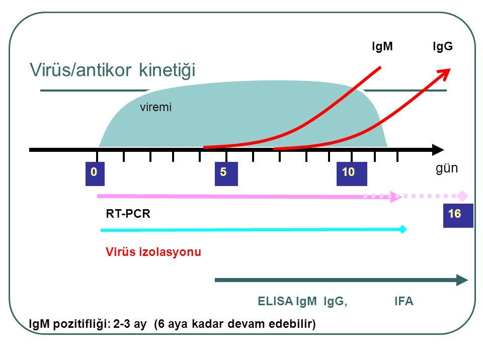 viremi 5 IgM RT-PCR ELISA IgM IgG,IFA Virüs/antikor kinetiği Virüs izolasyonu 010 IgG 16 IgM pozitifliği: 2-3 ay (6 aya kadar devam edebilir) gün