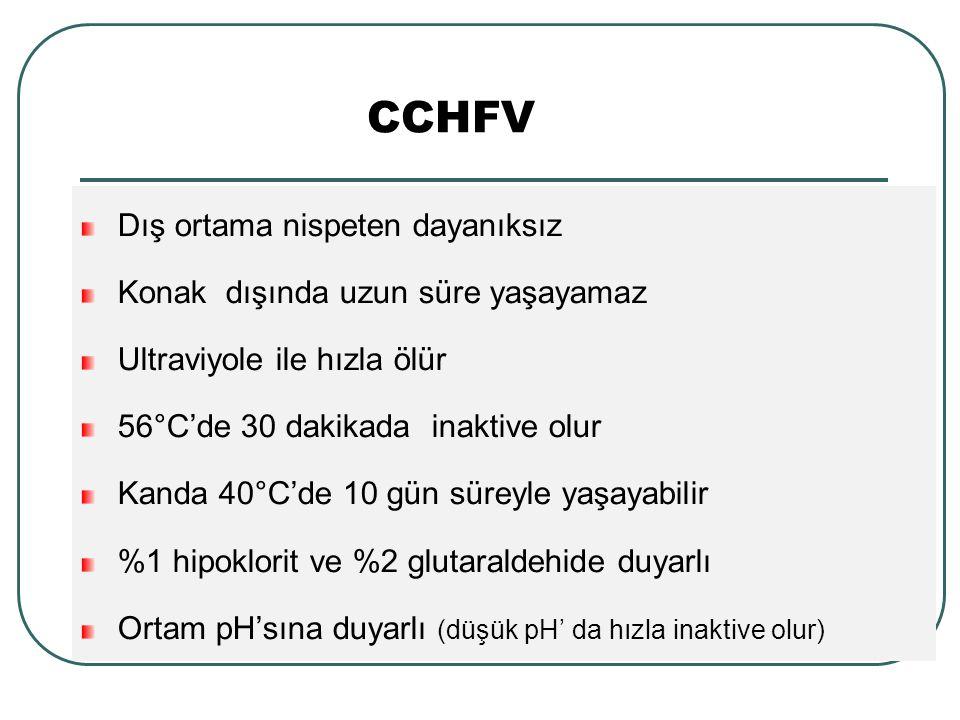 CCHFV Dış ortama nispeten dayanıksız Konak dışında uzun süre yaşayamaz Ultraviyole ile hızla ölür 56°C'de 30 dakikada inaktive olur Kanda 40°C'de 10 gün süreyle yaşayabilir %1 hipoklorit ve %2 glutaraldehide duyarlı Ortam pH'sına duyarlı (düşük pH' da hızla inaktive olur)