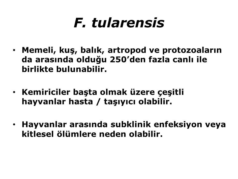 F. tularensis Memeli, kuş, balık, artropod ve protozoaların da arasında olduğu 250'den fazla canlı ile birlikte bulunabilir. Kemiriciler başta olmak ü