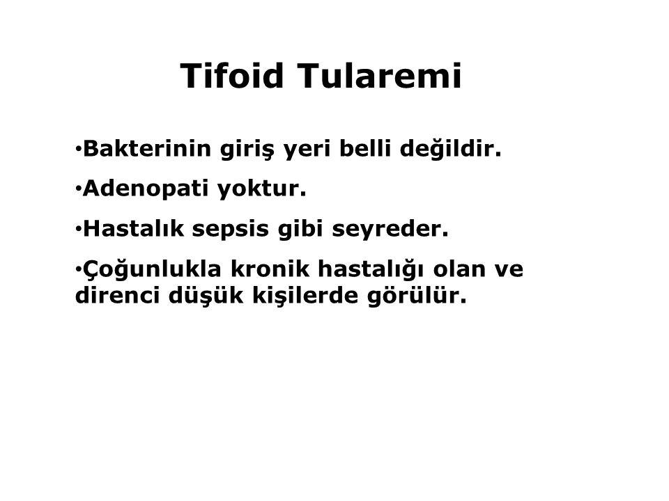Tifoid Tularemi Bakterinin giriş yeri belli değildir. Adenopati yoktur. Hastalık sepsis gibi seyreder. Çoğunlukla kronik hastalığı olan ve direnci düş