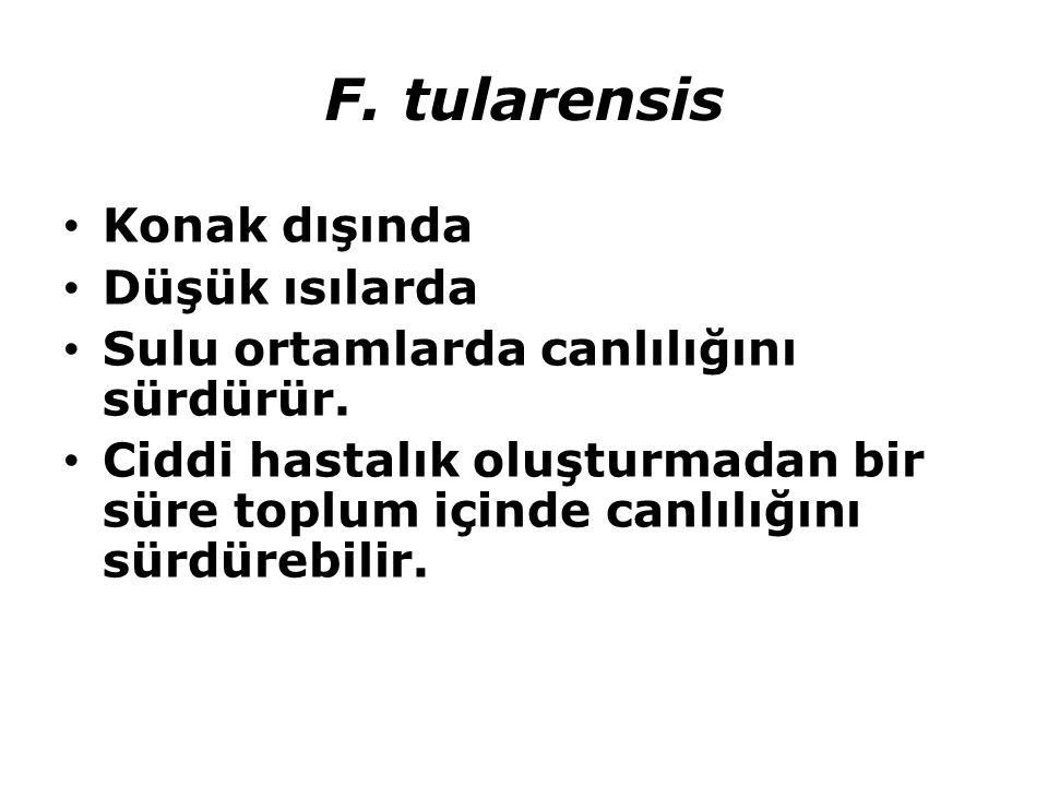 F. tularensis Konak dışında Düşük ısılarda Sulu ortamlarda canlılığını sürdürür. Ciddi hastalık oluşturmadan bir süre toplum içinde canlılığını sürdür