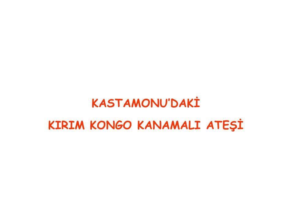 KASTAMONU'DAKİ KIRIM KONGO KANAMALI ATEŞİ
