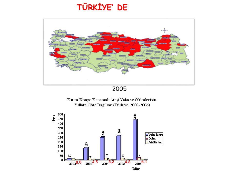 TÜRKİYE' DE 2002-2003 2004 2005