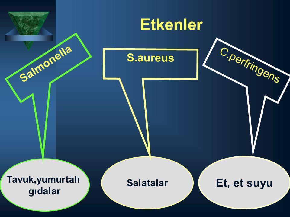 Etkenler Tavuk,yumurtalı gıdalar Salatalar Salmonella S.aureus C.perfringens Et, et suyu