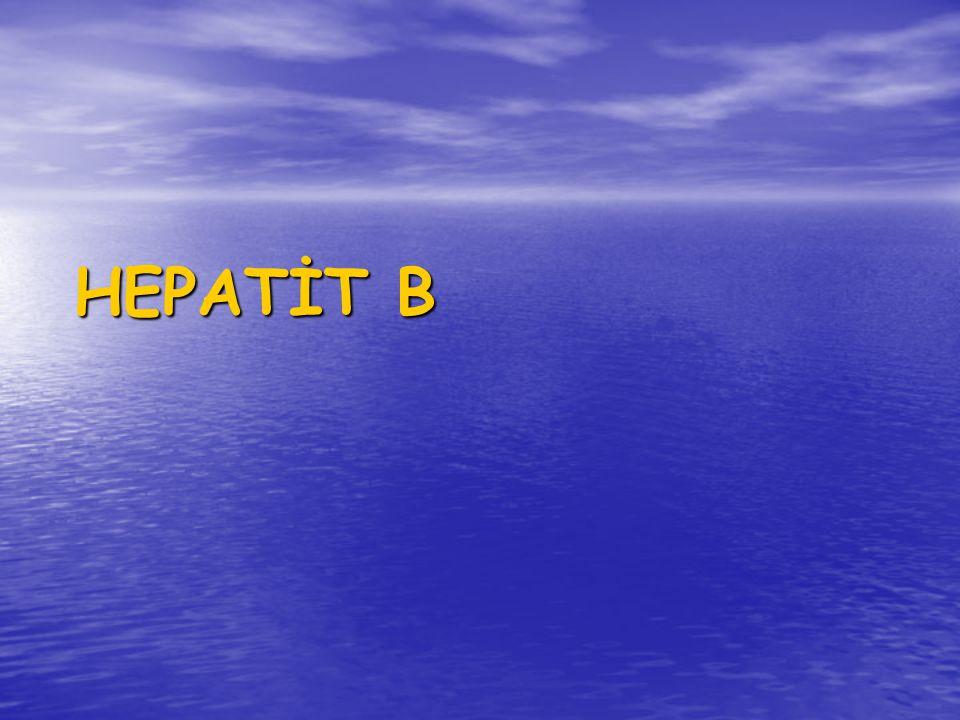 HEPATİT B