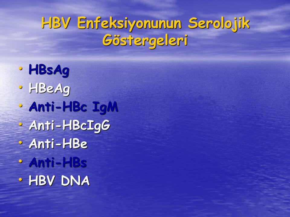 HBV Enfeksiyonunun Serolojik Göstergeleri HBsAg HBsAg HBeAg HBeAg Anti-HBc IgM Anti-HBc IgM Anti-HBcIgG Anti-HBcIgG Anti-HBe Anti-HBe Anti-HBs Anti-HBs HBV DNA HBV DNA