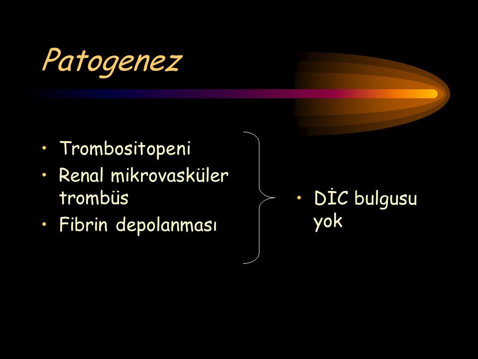 Patogenez Trombositopeni Renal mikrovasküler trombüs Fibrin depolanması DİC bulgusu yok
