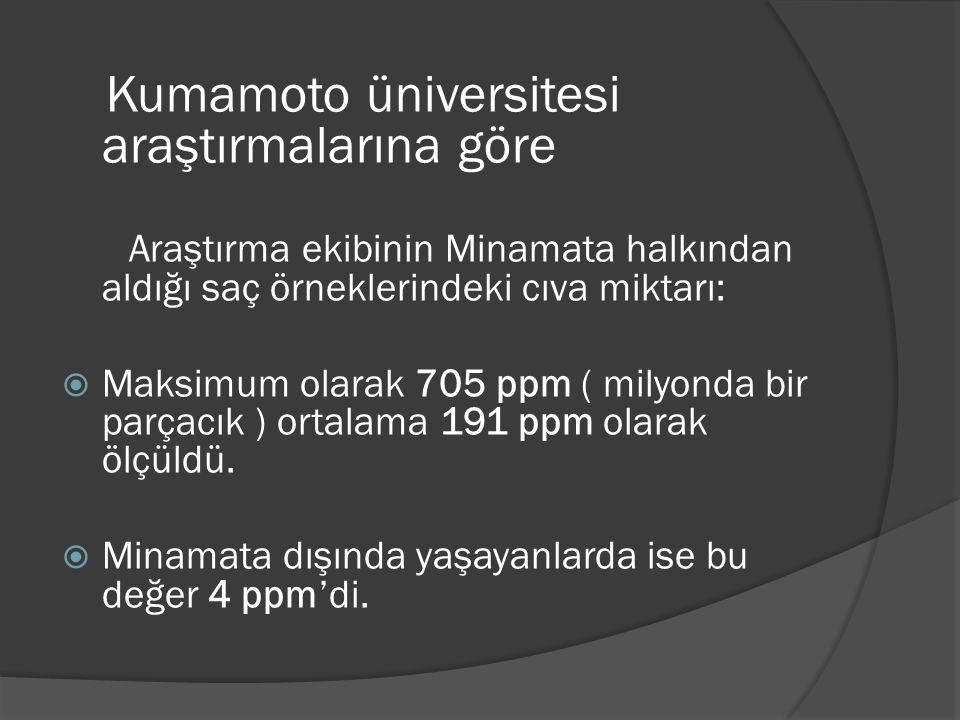 Kumamoto üniversitesi araştırmalarına göre Araştırma ekibinin Minamata halkından aldığı saç örneklerindeki cıva miktarı:  Maksimum olarak 705 ppm ( m