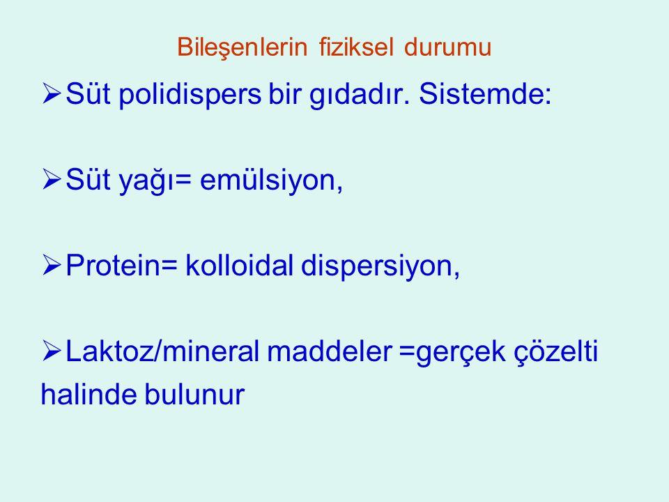 Bileşenlerin fiziksel durumu  Süt polidispers bir gıdadır.