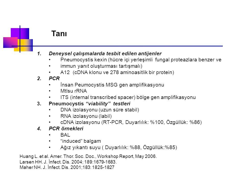 Tanı 1.Deneysel çalışmalarda tesbit edilen antijenler Pneumocystis kexin (hücre içi yerleşimli fungal proteazlara benzer ve immun yanıt oluşturması ta