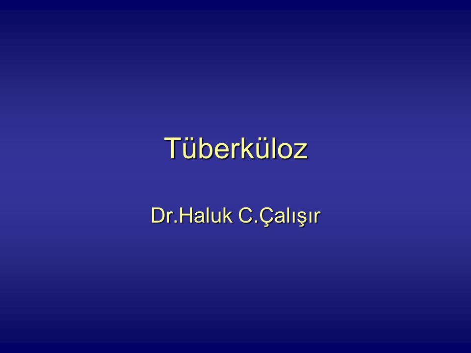 Tüberküloz Dr.Haluk C.Çalışır