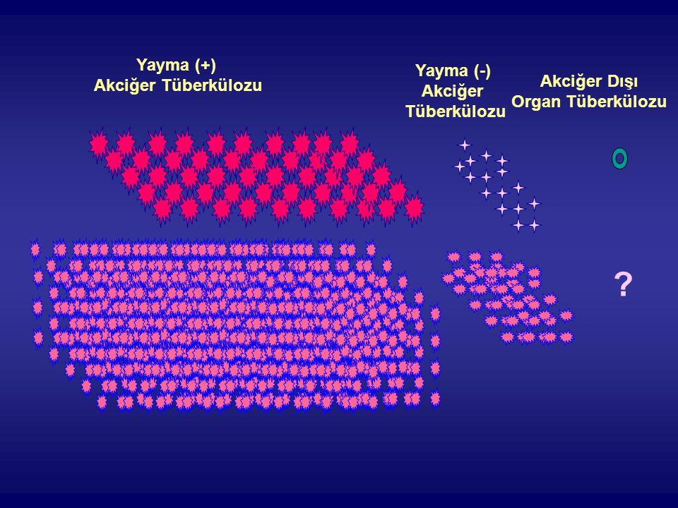 ? Yayma (+) Akciğer Tüberkülozu Yayma (-) Akciğer Tüberkülozu Akciğer Dışı Organ Tüberkülozu