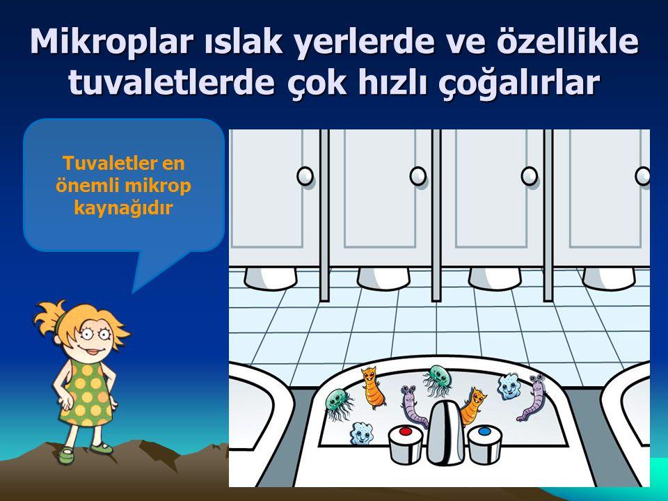 Tuvaletler en önemli mikrop kaynağıdır Mikroplar ıslak yerlerde ve özellikle tuvaletlerde çok hızlı çoğalırlar