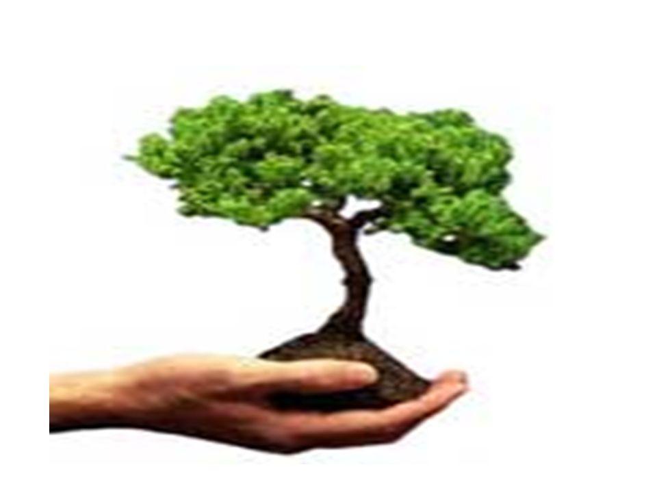 ÇEVRESEL ÖZELLİKLER Çevresel faktörler ortamın sıcaklık, basınç, radyasyon durumunu içerir.