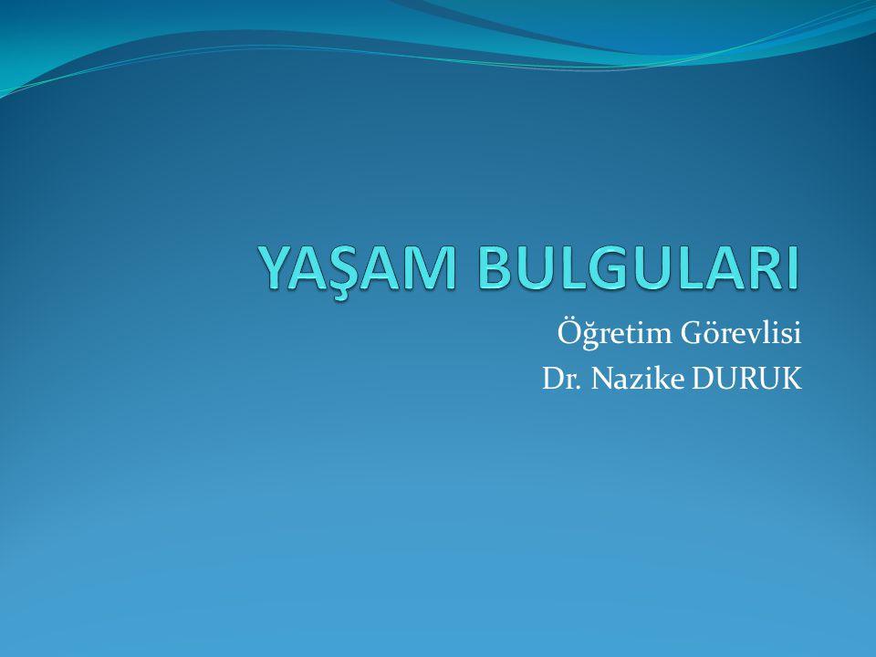 Öğretim Görevlisi Dr. Nazike DURUK