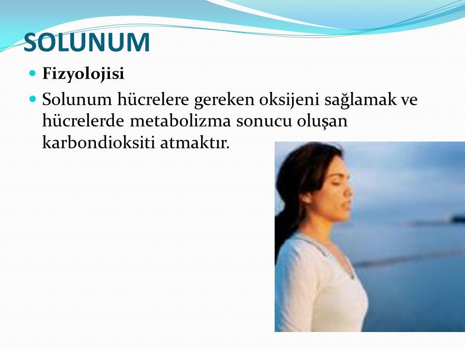 SOLUNUM Fizyolojisi Solunum hücrelere gereken oksijeni sağlamak ve hücrelerde metabolizma sonucu oluşan karbondioksiti atmaktır.